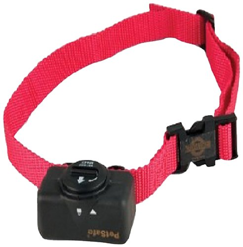 Top 10 Best Bark Control Collars in 2019 Reviews