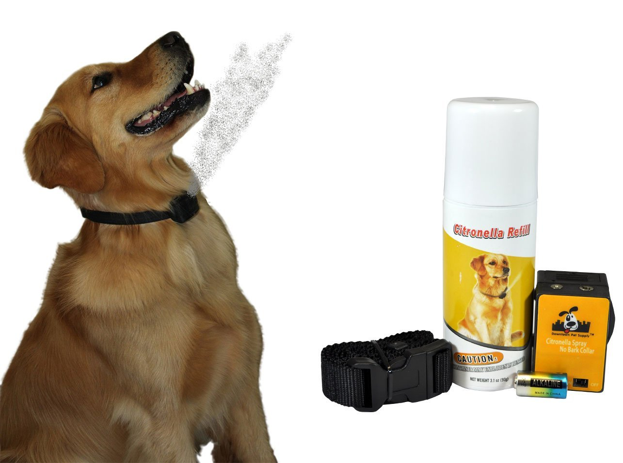 Small Dog Bark Control Reviews